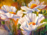 White-Poppies_200x150