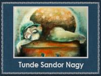 Tunde Sandor Nagy