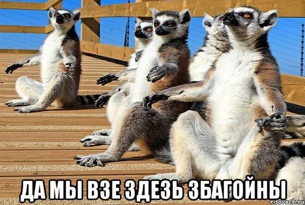 cb52931f2466f3f57b19325d947a5b10-uzbagoitelnoesrvyrmonl