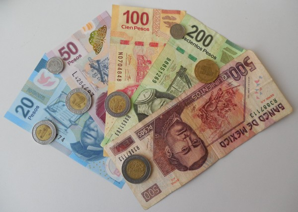 цесна банк кредиты