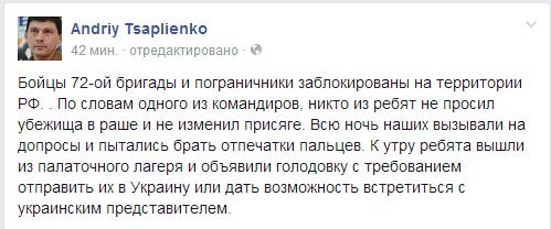 kaska_timchyka