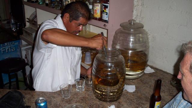 Rattle Snake shot at Gordo's Cantina