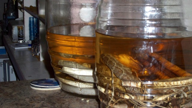 Yes, those are real rattle snakes in the bottom of the tequila jars