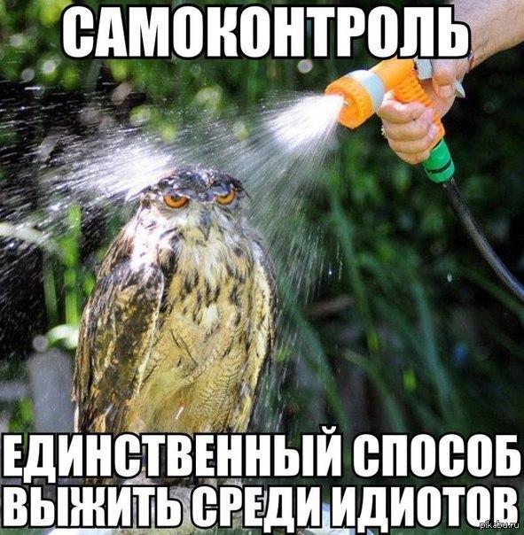 спок3