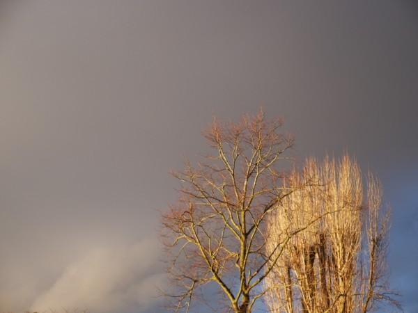Ominous Christmas Sky