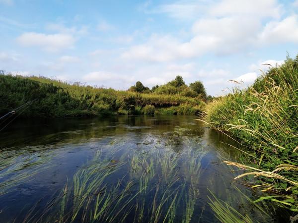 Уникальные старицы реки, последствия сплава леса