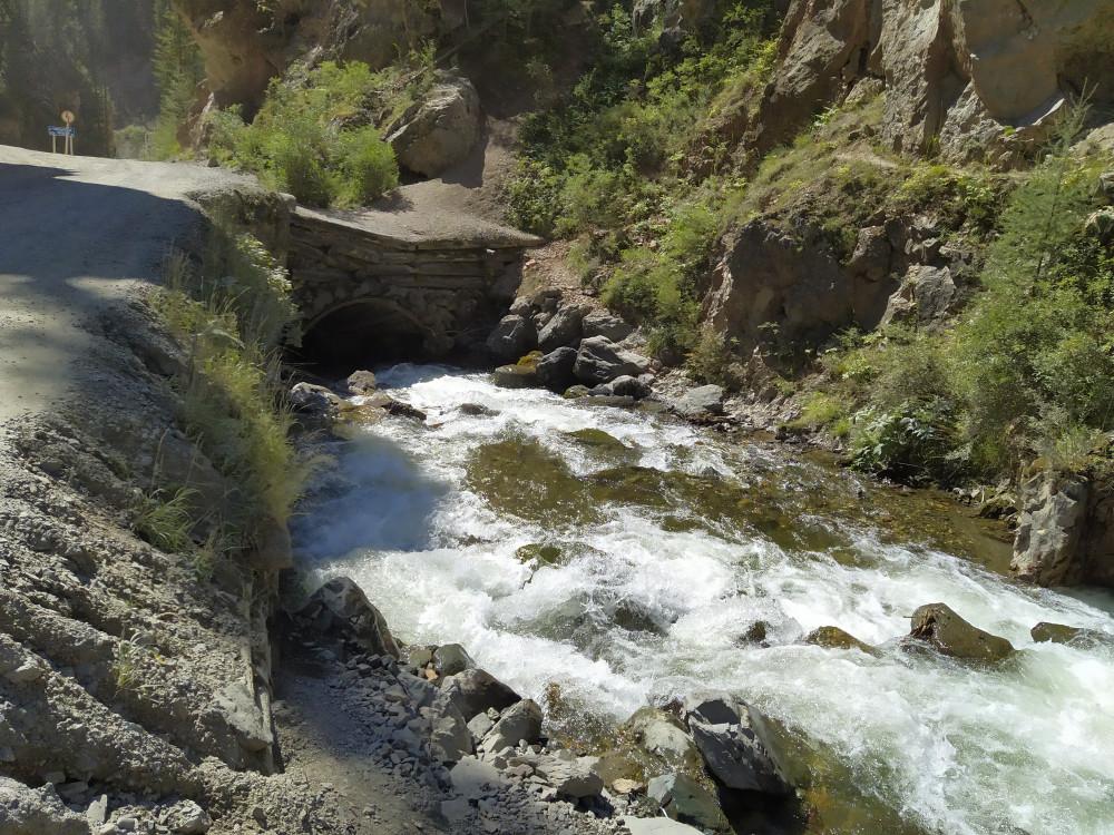 Река Че**тка течет между крутых скал IMG_20210825_135031