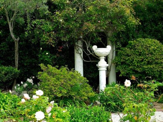 white garden2