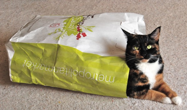 Sophie endorses shopping locally