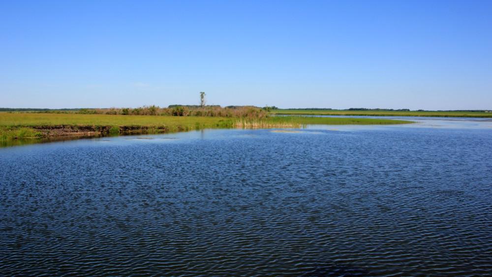 Агапино шадринский район рыбалка