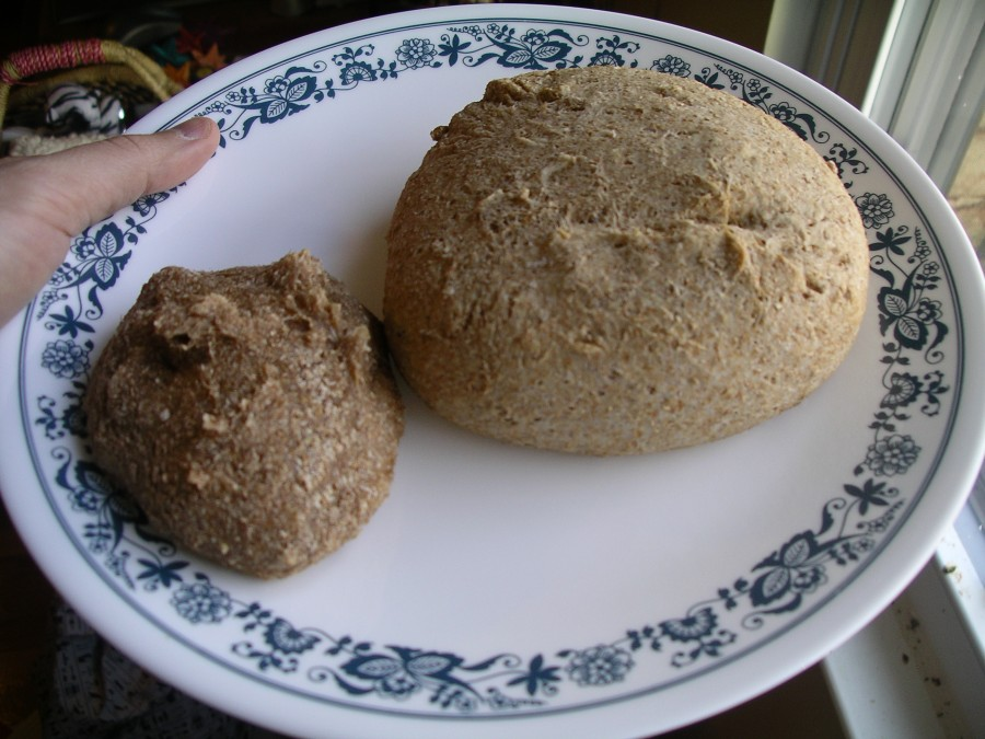 whole_wheat_and_flour_lump