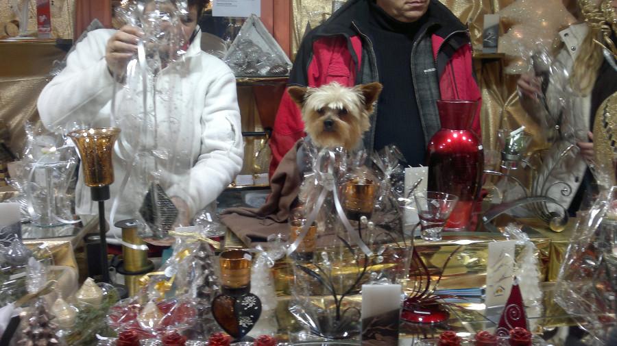 Strasbourg Weihnachtsmarkt 051