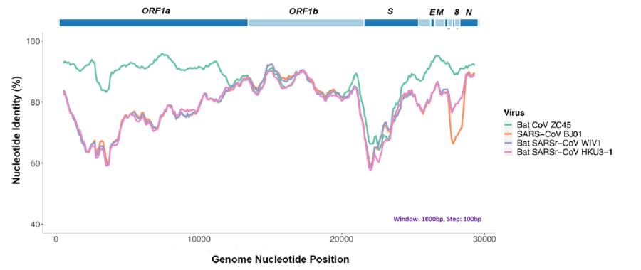 Новости науки и псевдонауки: клонирование, происхождение коронавируса,
