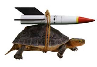 performance_tortoise_rocket