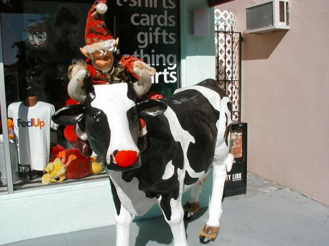 Rudy the Cow with Elf 11/28/04
