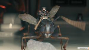 kinopoisk.ru-Ant-Man-2611864