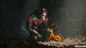 kinopoisk.ru-Ant-Man-2611868