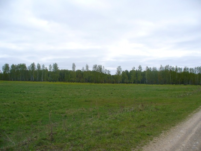 Продажа земельный участок сельскохозяйственного назначения в Тверской области