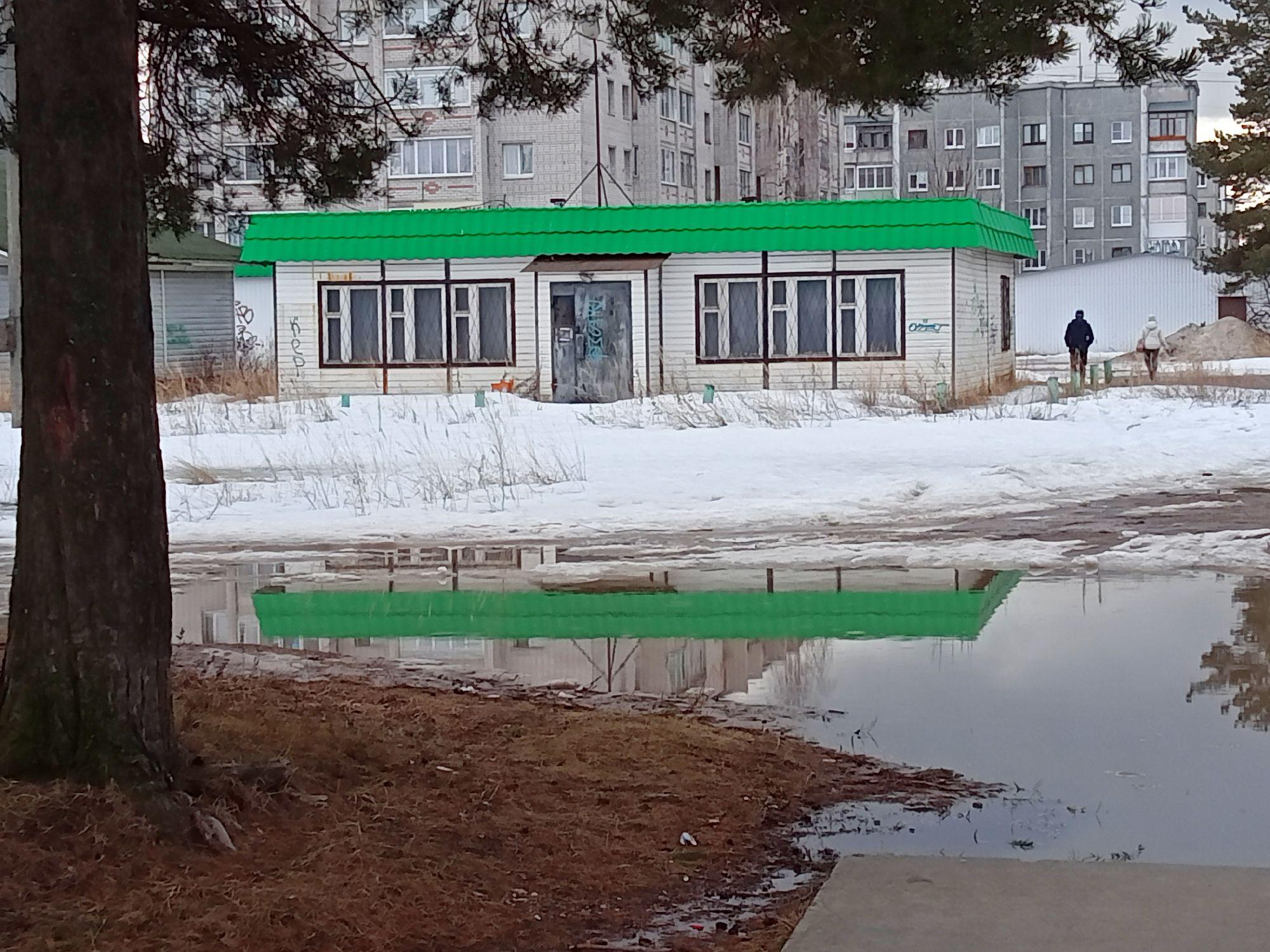 01. Отражение в зелёном