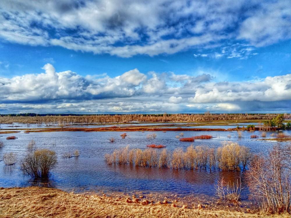 02. река большая Коряжемка, 05 мая 2021 фото на мобильный
