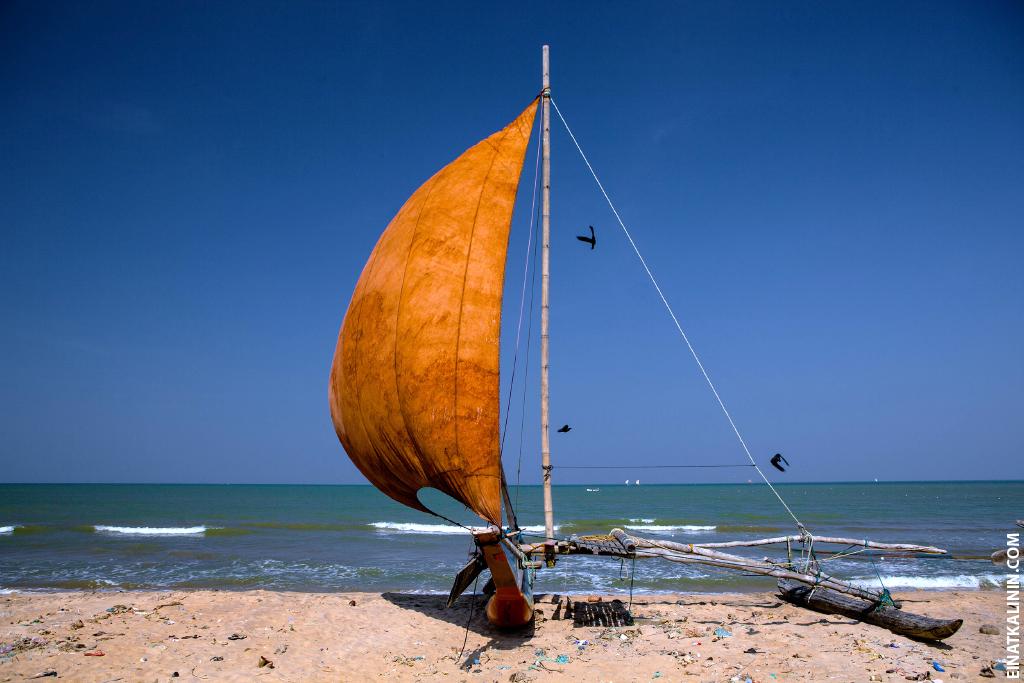 Sri Lanka by Einat Kalinin