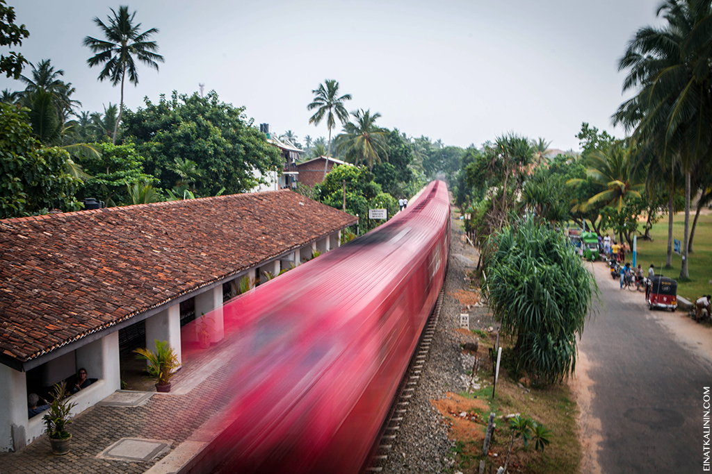 srilanka-bentota-2013-1546