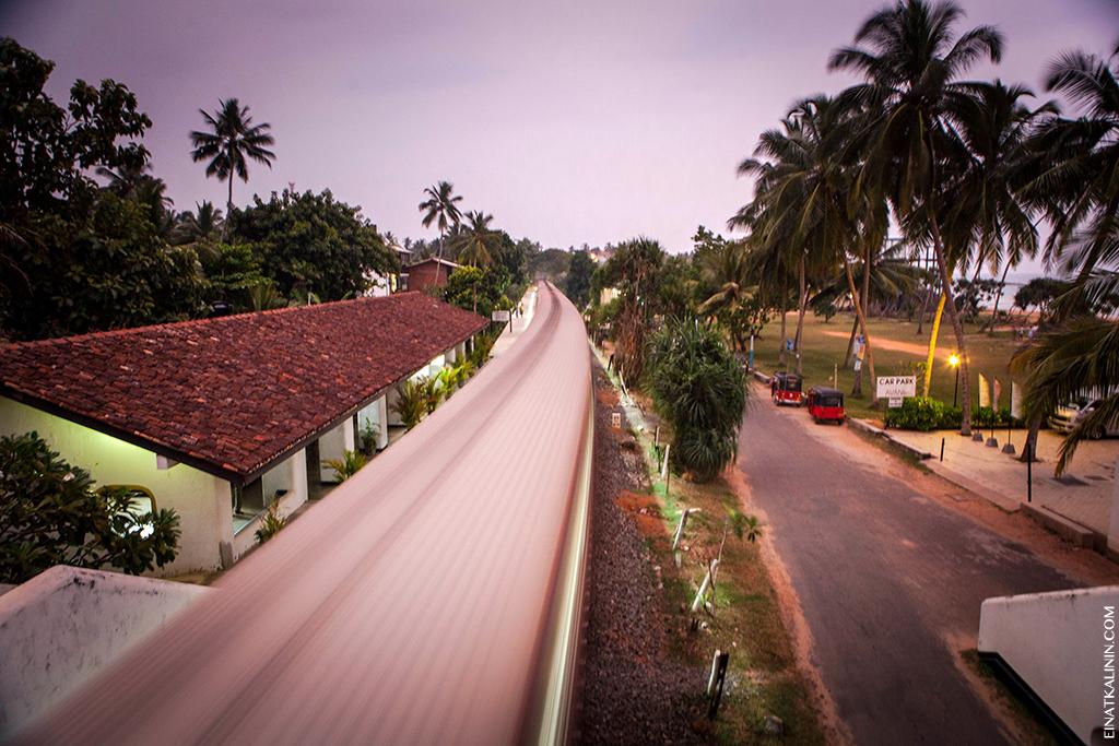 srilanka-bentota-2013-1566