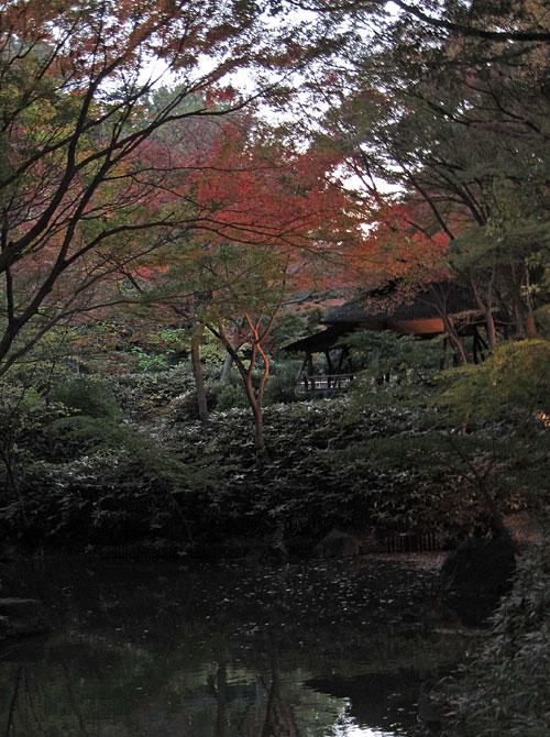 Tsutsuji-chaya-fall