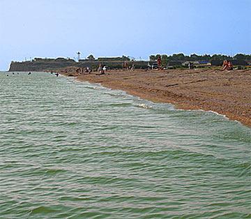 камышеватская фото пляжа здесь постоянно встречаешь