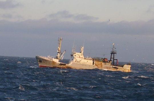 Средний рыболовный траулер_cr