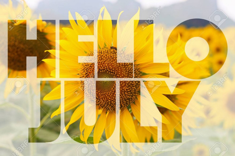 57676081-hello-july-word-on-sunflower-background
