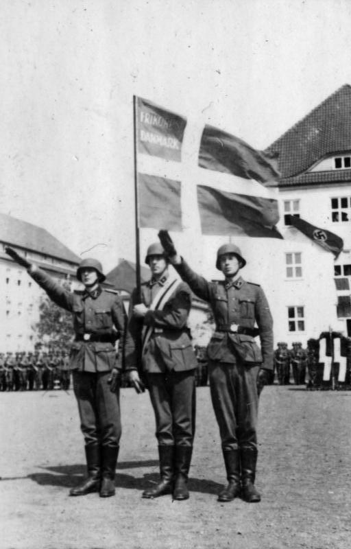 Bundesarchiv_Bild_101III-Weill-096-27,_Deutschland,_Vereidigung_von_Dänen