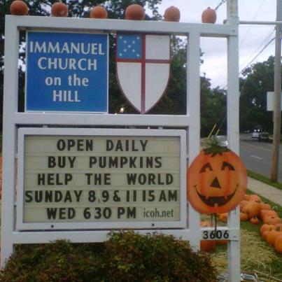 Buy Pumpkins Help the World