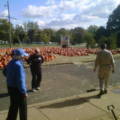 The ICOH Pumpkin Patch