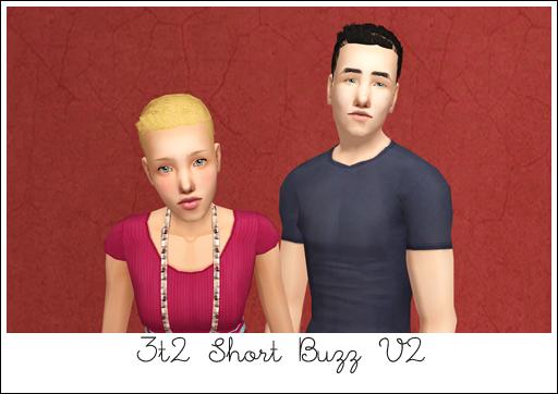 ShortBuzzV2
