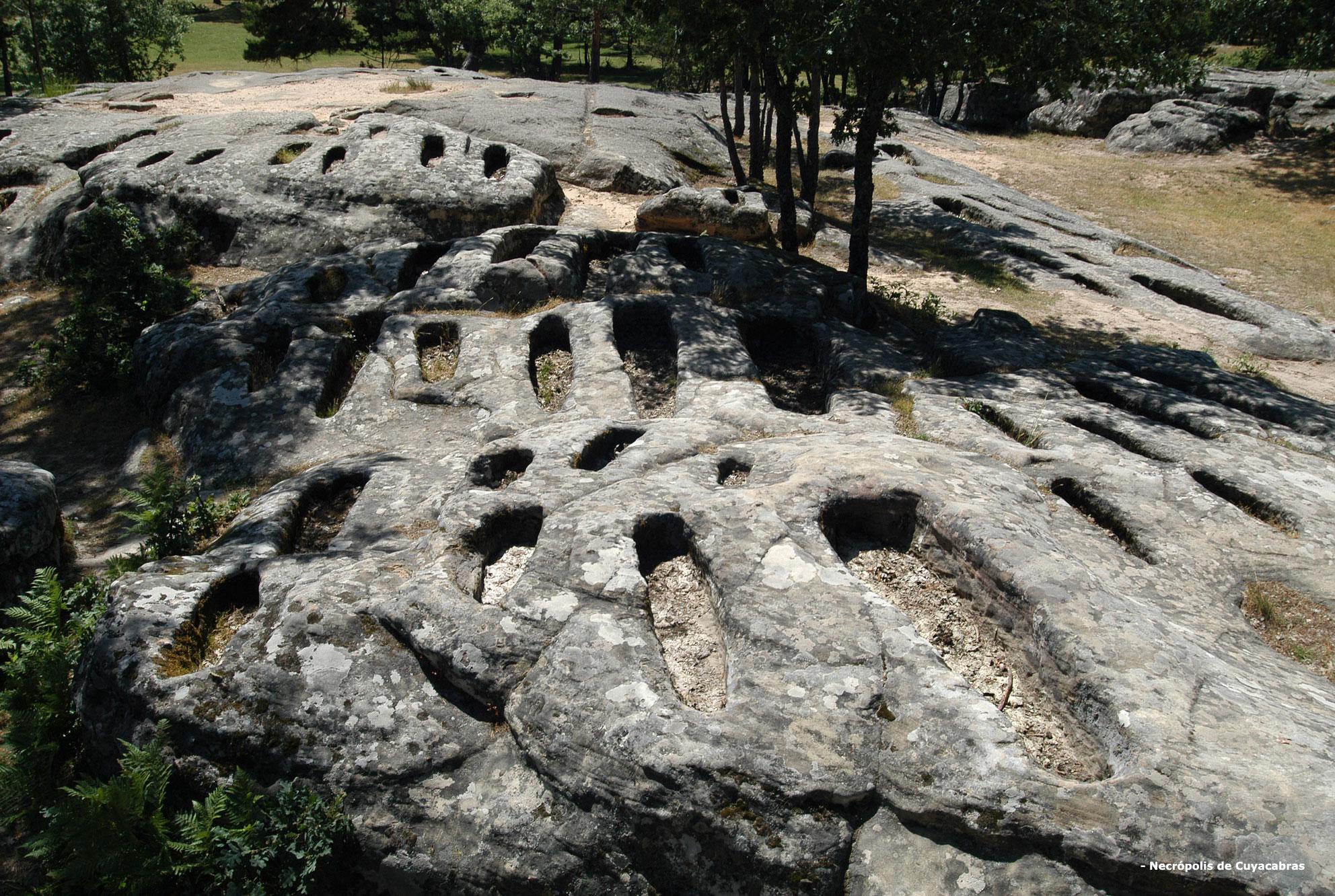 necropolis-cuyacabras