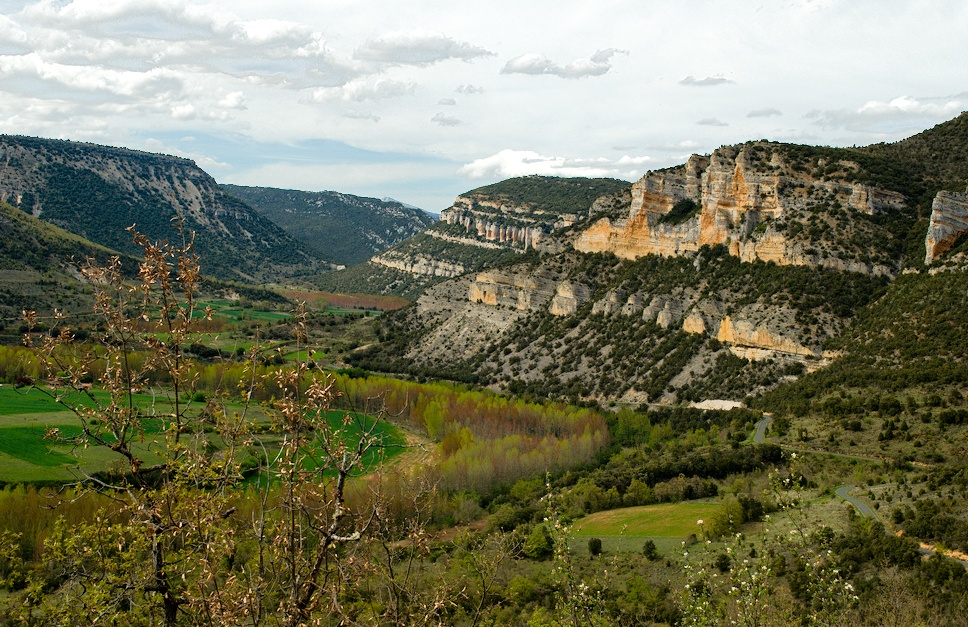 16cañon Ebro
