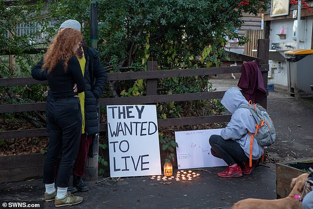 A group of vegans hold a vigil for nine turkeys from St Werburghs farm, Bristol, which were killed for Christmas diners.jpg