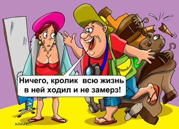 _humour478z.jpg