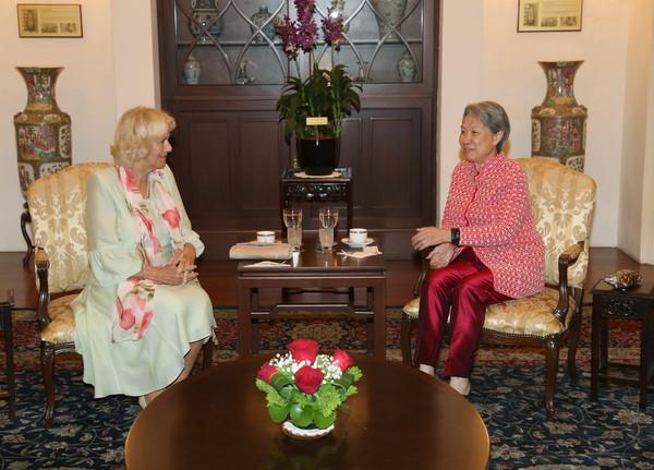 9 Ho+Ching+Prince+Wales+Duchess+Cornwall+Visit+MS6QYqQAVtFl.jpg