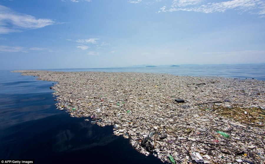 4  The-Island-of-Garbage-in-the-Pacific-is-Already-Bigger-Than-3-Countries.jpg