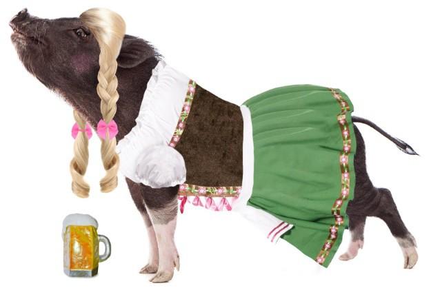 pot-bellies-up-german-beer-girl-pig-costume.jpg
