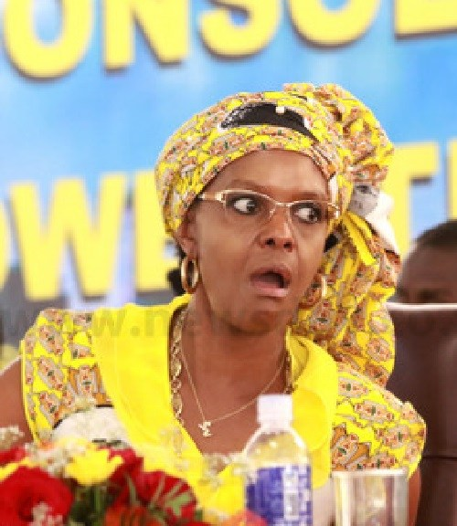 7  Grace-Mugabe-chat-with-Ignatious-Chombo-during-a-Zanu-Pf-congres-yesterday-Pic-Shepherd-Tozvireva1-2.jpg