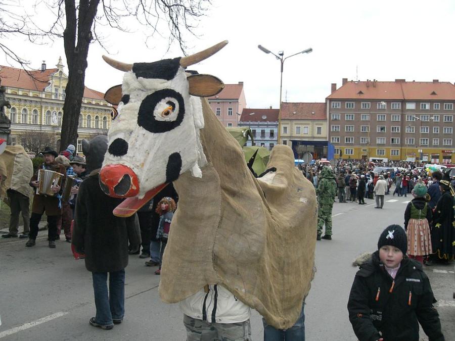 _Туронь» в Мясопуст. Милевско, _Чехия, 2008 год.jpg