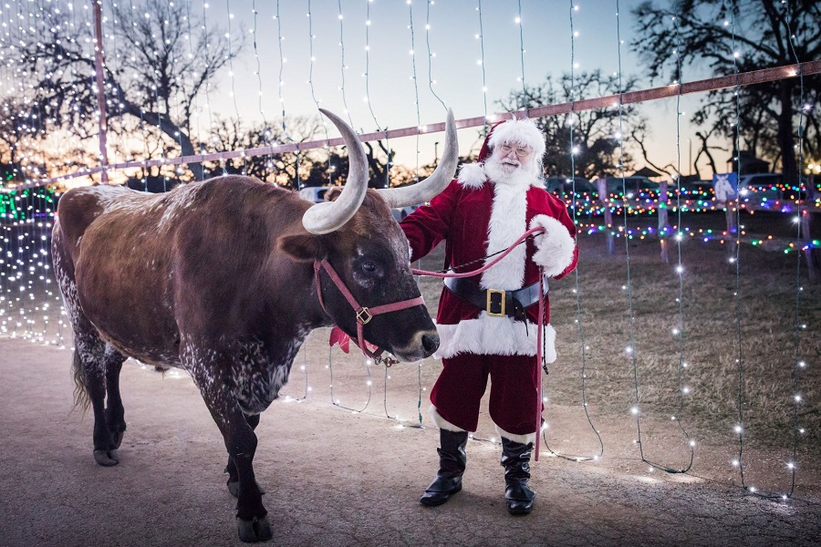 _900 x 600 Get in the glow with Santa at Old West Christmas Light Fest.jpg