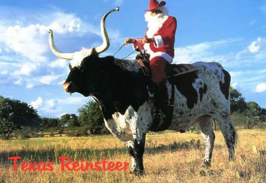 "2  Santa (Don Jackson) riding ""Captain Twiggs"".jpg"