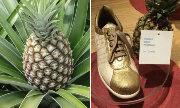 4  pineapple2.jpg