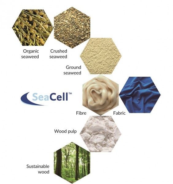 40  SF_Supply-Chain-Graphic_SeaCell_EN.jpg