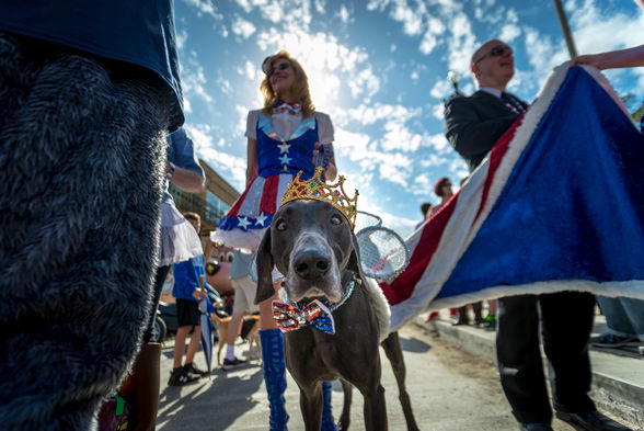 25  Mardi Gras goes to the dogs with the canine-centric Barkus parade..jpg