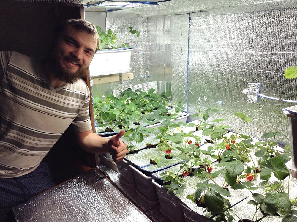 Бизнес по выращиванию в гараже 26